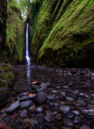 Fall arrives at Oneonta Gorge